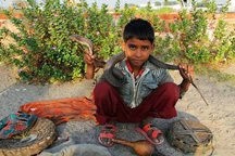 Snake charmer on the way to the Taj Mahal