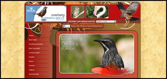 Overberg birding route theme, Western Cape Birding
